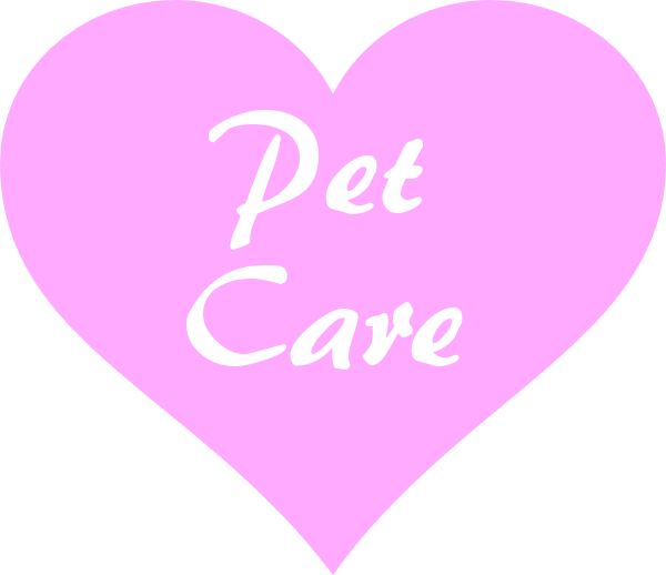 Pet care Pinar de Campoverde